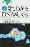 工藤光子/中村桂子「見て分かるDNAのしくみ」BLUE BACKS
